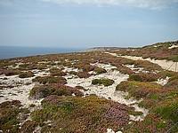 le Cap de la chèvre marque surtout par l'aspect sauvage et désolé des paysages