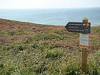Couverte de lande, la pointe de Dinan est idéale pour flâner ou marcher le long du sentier littoral.