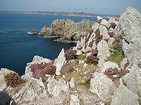 la pointe de Dinan laisse découvrir un large panorama sur les déchirures de la côte de la mer d'Iroise, les Tas de pois de la pointe de Pen-Hir et le cap de la Chèvre.