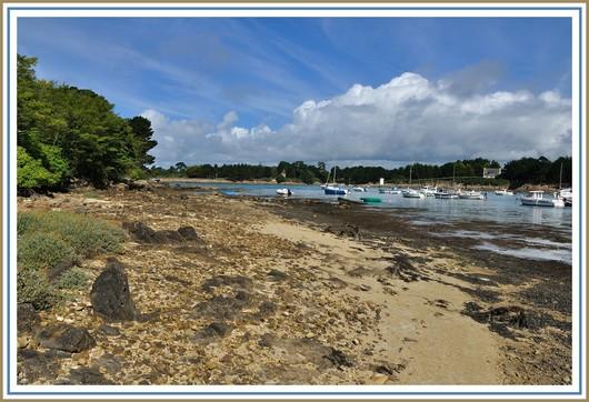 Balade au bord de l'eau, dans l'Anse de Pouldohan (Trégunc) à marée basse. Photo prise le dimanche 12 août 2012.