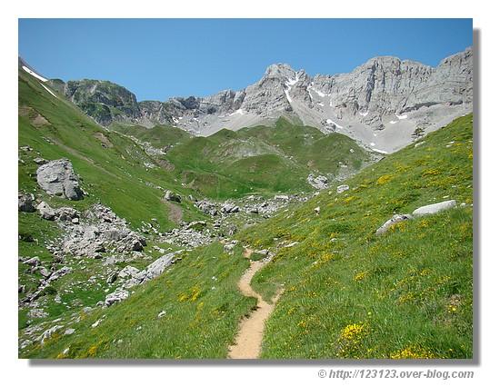 Petit sentier de montagne (vallée d'Aspe - juin 2008) - © http://123123.over-blog.com