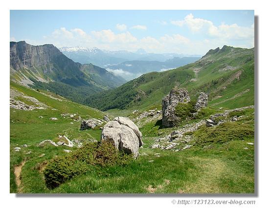 Paysage de la vallée d'Aspe (juin 2008) - © http://123123.over-blog.com