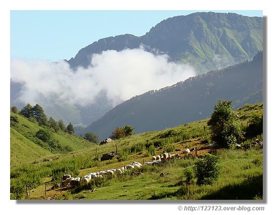 Paysages du plateau de Lhers, près de Lescun (64) en été 2008 - © http://123123.over-blog.com