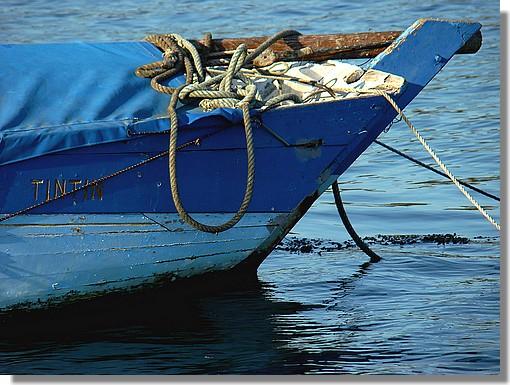 Petite barque au joli nom de Tintin dans le vieux port de la Forêt Fouesnant. Photo prise le dimanche 6 septembre 2009. - © http://borddemer.over-blog.fr