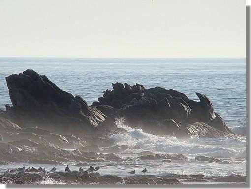 Les célèbres rochers de St Guénolé. Photo prise le 8 septembre 2009. - © http://borddemer.over-blog.fr