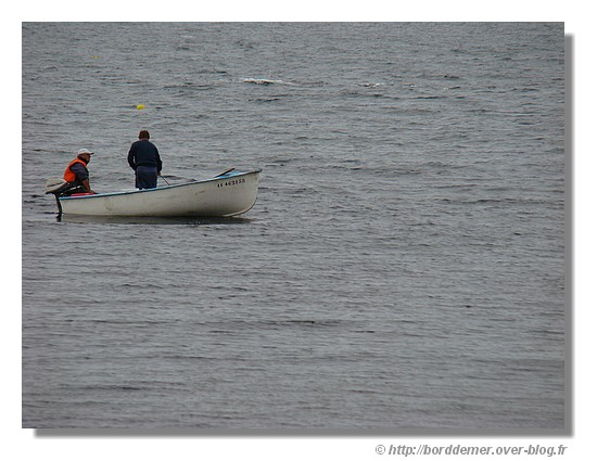 Pêche en mer à Trégunc (le dimanche 31 août 2008) - © http://borddemer.over-blog.fr