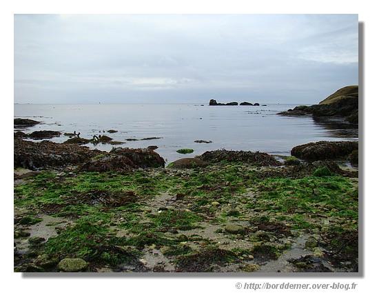 Calme plat à marée basse (Pouldohan - Trégunc - 31 août 2008) - © http://borddemer.over-blog.fr