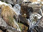 Petit ruisseau gelé (mars 2008).