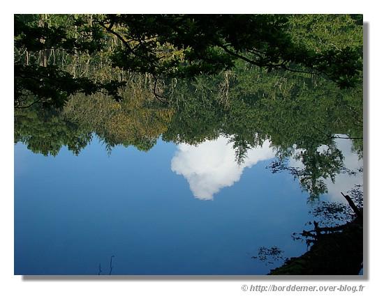 Reflets dans l'Anse Saint Laurent (La Forêt Fouesnant, le lundi 08 septembre 2008) - © http://borddemer.over-blog.fr