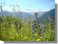 Vallée d'Aure (65)