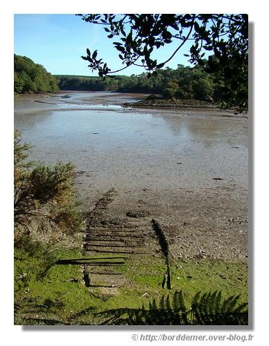 Le Belon à marée basse sur la commune de Riec/Belon (le 15 septembre 2008) - © http://borddemer.over-blog.fr