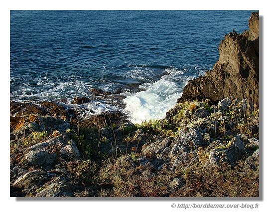Bord de mer près de Doélan à Clohars Carnoët le 21 septembre 2008 - © http://borddemer.over-blog.fr