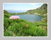 L'étang d'Appy en Ariège