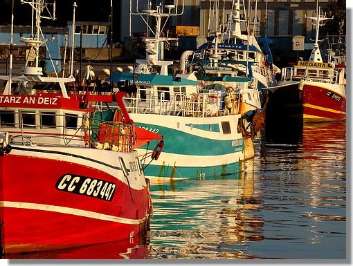 Le port de Concarneau en soirée avec toutes ses belles couleurs. Photo prise le 27 septembre 2009. - © http://borddemer.over-blog.fr