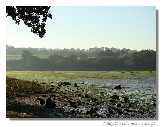 L'aven au petit matin, à marée basse (Photo prise près de la chapelle de Trémoor à Riec/Belon, le dimanche 28 septembre 2008) - © http://borddemer.over-blog.fr