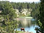 Les lacs des Pyrénées