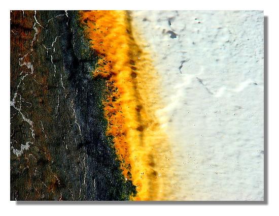 Grop plan sur la coque du David-Pierre (chalutier bigouden). Toujours étonnant et fascinant d'observer le travail de l'eau sur les coques des navires. Photo prise le dimanche 31 mai 2009. - © http://borddemer.over-blog.fr