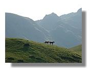 Col d'Agnès au petit matin. Juin 2007 Ariège.