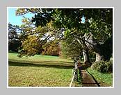 Les photos du mois d'octobre 2008