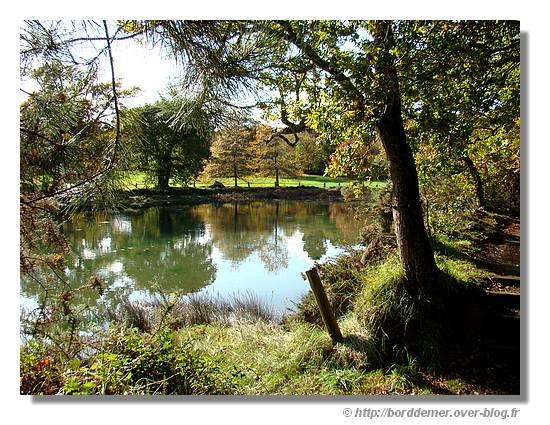 Palette d'automne (27 octobre 2008 - Concarneau) - © http://borddemer.over-blog.fr