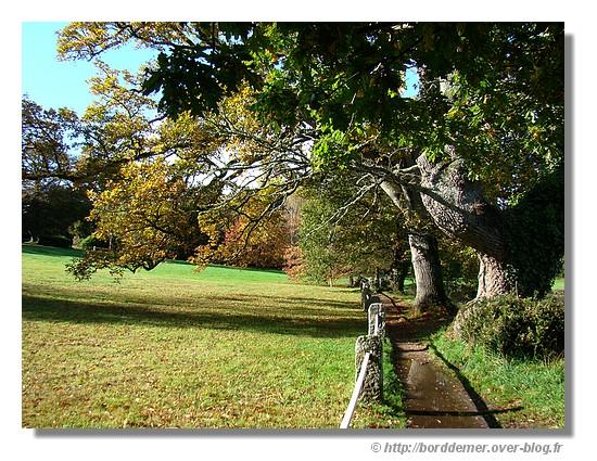 Paysage d'automne (le lundi 27 octobre 2008 près de l'Anse du Minaouët) - © http://borddemer.over-blog.fr