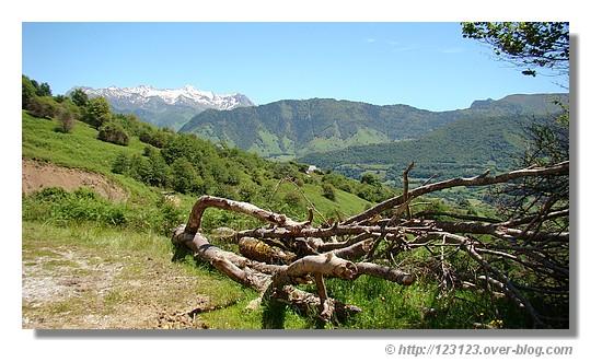 Paysages de Lescun dans les Pyrénées Atlantiques en été 2008 - © http://123123.over-blog.com