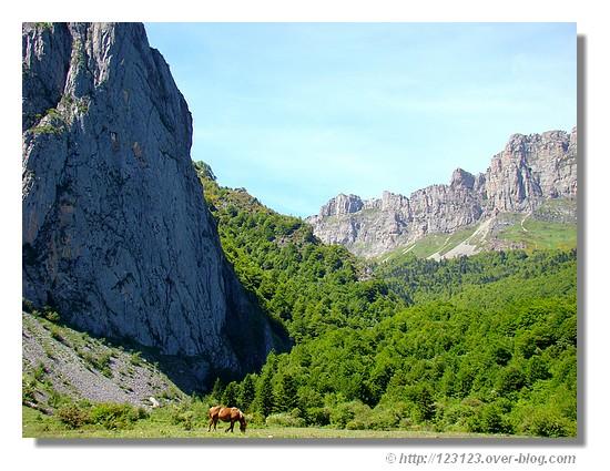 Le Plateau de Sanchèse près de Lescun (Pyrénées Atlantiques, juin 2008). - &cophttp://123123.over-blog.com