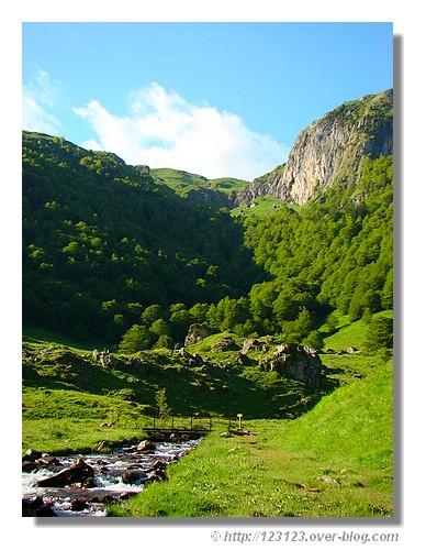 Nature pyrénéenne. Photo prise en juin 2008 près du lac d'Estaens (Pyrénées Atlantiques). - © http://123123.over-blog.com