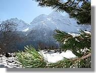 paysage d'hiver (65)