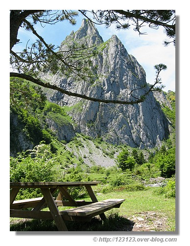 Petite pause au coeur des Pyrénées (Plateau de Sanchez dans la vallée d'Aspe en juin 2008) - © http://123123.over-blog.com