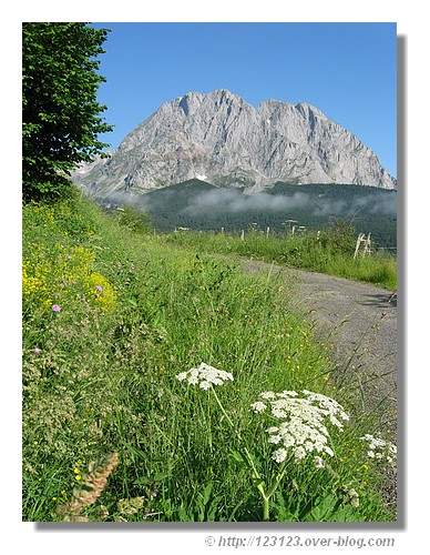 Petite route des Pyrénées (Vallée d'Aspe - juin 2008) - © http://123123.over-blog.com