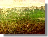 Vieilles coques