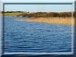 L'étang de Loc'h Lougar à Trégunc