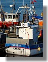 Bateaux de pêche à quai, le samedi 4 avril 2009 (dans l'arrière port).