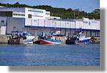 Chalutiers et bolincheurs à quai. De gauche à droite, le Cap en Baie (Erquy - PL 922413), les concarnois Lycia et Liberty S. Photo prise le 18 juillet 2010.