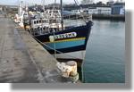Le Nymphéa de Morlaix (MX 252352) à quai. Il s'agit d'un caseyeur de Roscoff, d'une longueur de 18 mètres qui a été construit à Carantec il y a une trentaine d'années. Son propriétaire vient de prendre sa retraite. Ce sera le prochain bateau pour Haïti transformé par l'équipe concarnoise de Solidarité pêche. Photo prise le 26 décembre 2010.
