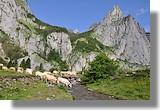 Le plateau de Sanchèse. Le 26 juin 2010.