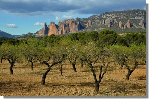 Situé entre Jaca et Huesca, les parois vertigineuses qui se dressent dans le ciel d'Aragon ont fait de la région du Reino de los Mallos de Riglos (Aragón - España), un haut lieu de l'escalade. Un superbe article est à découvrir dans le dernier Pyrénées Magazine (Mars/Avril 2012). La photo est prise le 20 mars 2012.