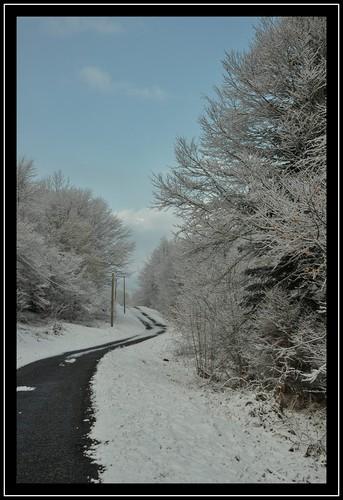 Route en vallée d'Aspe (mars 2012).