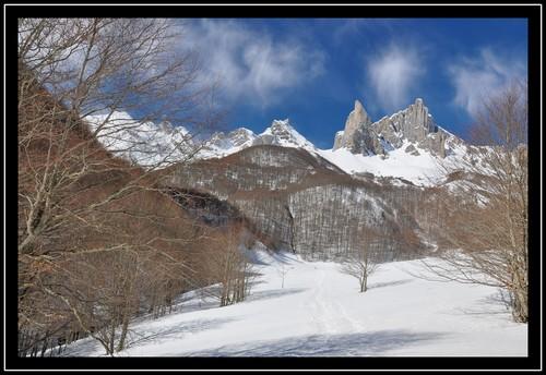 Plateau d'Ansabère (mars 2013 - Vallée d'Aspe)