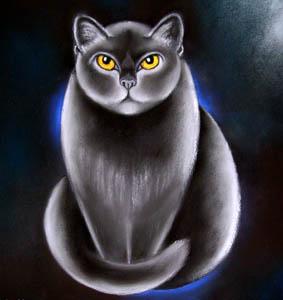 Chat noir 2 Marie Tuffreau