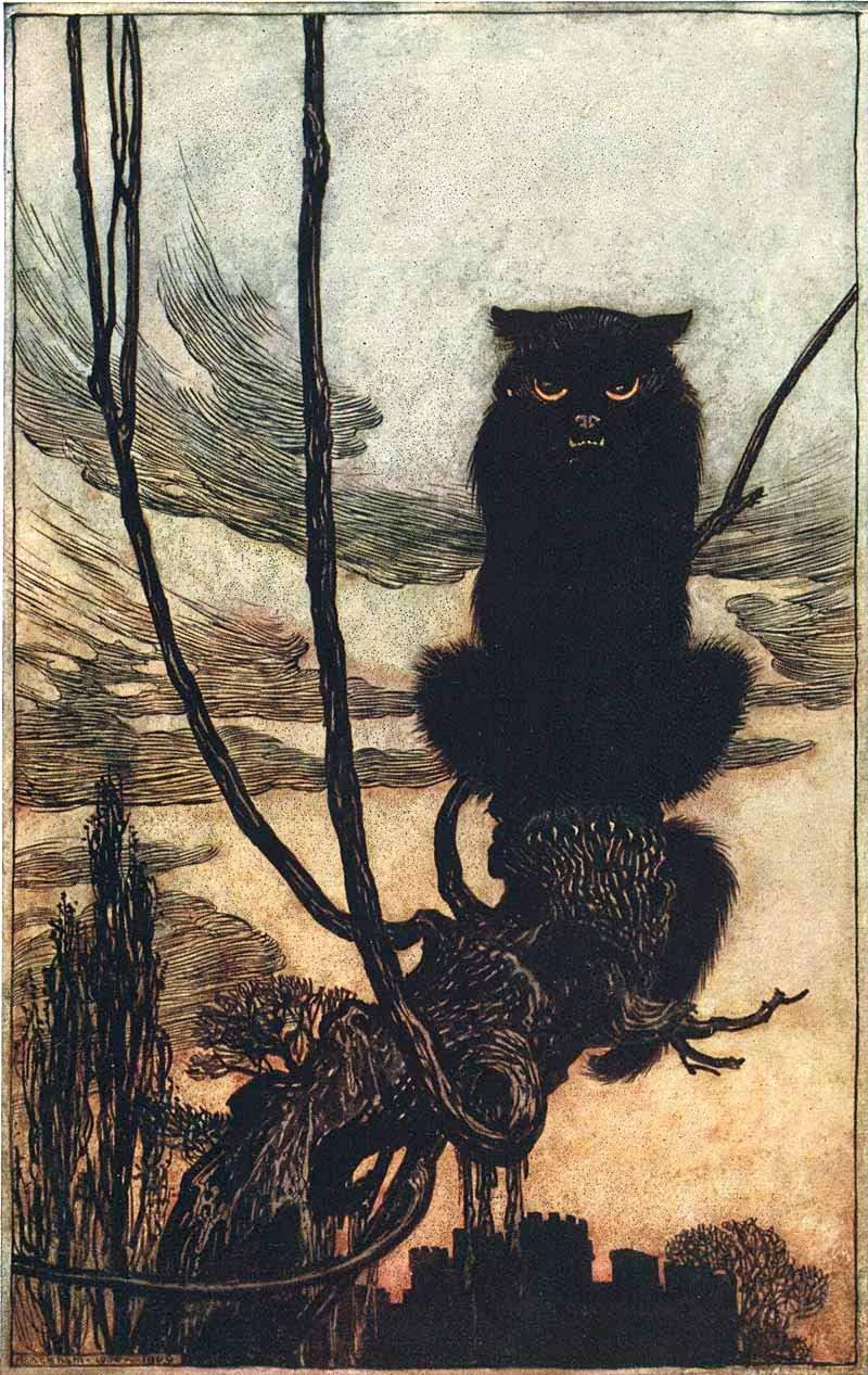 Chat noir - Arthure Rackham
