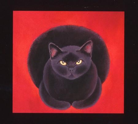 Chat noir  1 Marie Truffeau