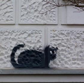Tag chat noir à Berlin