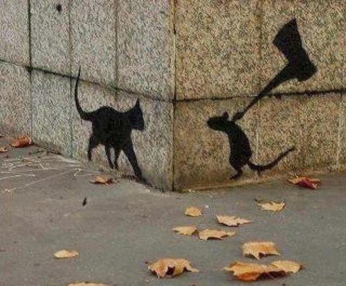 graff chat noir - anonyme