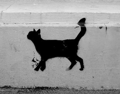 graff  chat noir_PARIS