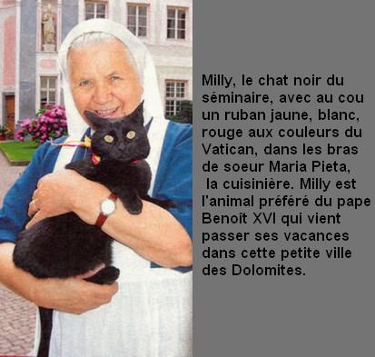 MILLY chat noir du pape BENOIT XVI
