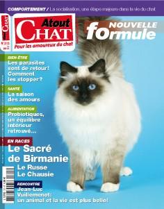 Atout Chat parle de chatsnoirs.com