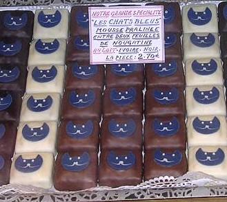 chocolat chat bleu