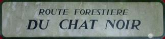 Route forestière du chat noir Alsace